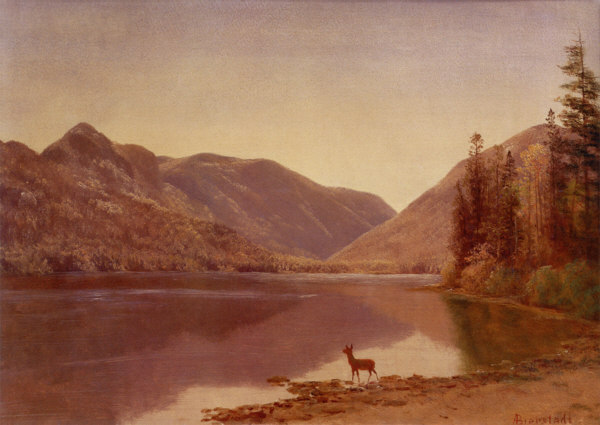 Echo Lake, Franconia Notch by Albert Bierstadt