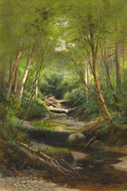 Littlefield Ravine, Jackson by Edward Hill