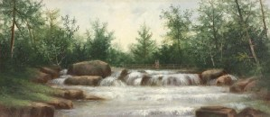 Jackson Falls and the Wildcat River by George McConnell