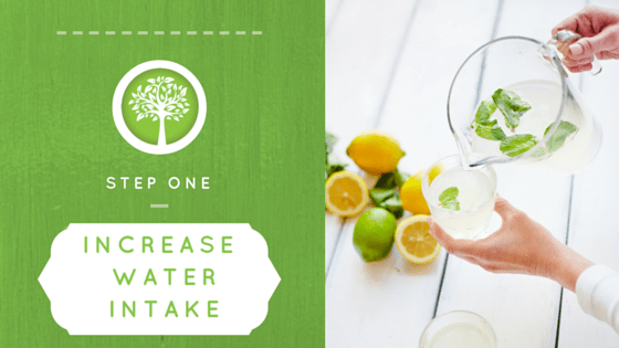 Step One Increase Water Intake