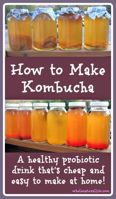 How to Make Kombucha - Whole Natural Life