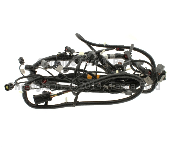 2005 focus wire harness