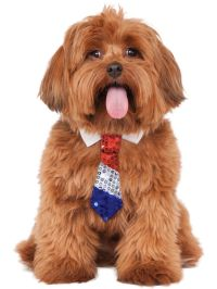 Patriotic Tie Costume for Pets - Dog and Cat Costumes for ...