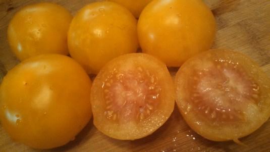 Tomato seed saving!