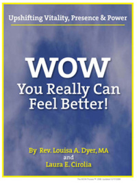 wow ebook cover