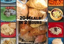 20 Freezer Meals in 2 Hours