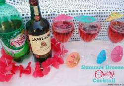 Summer Breezes Cherry Cocktail | Who Needs A Cape?