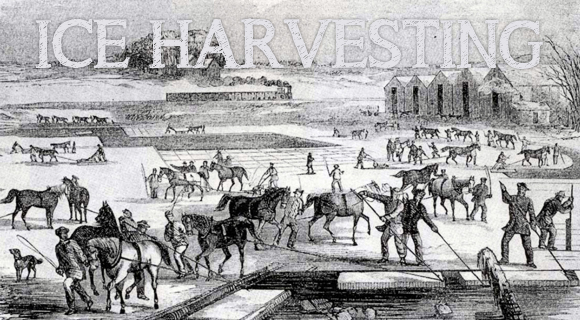 ice-harvesting-in-Wisconsin2