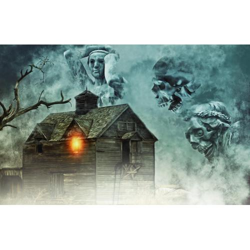 Medium Crop Of Bates Motel Haunted House