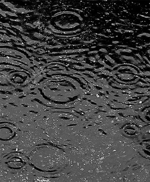 Falling Water Wallpaper 1080p Are Raindrops Tear Shaped The Why Files