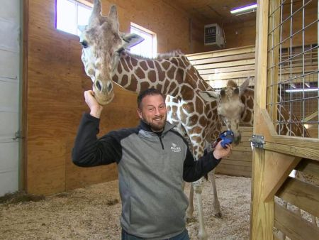 """I cannot confirm nor deny the possibility of another pregnancy,"" Animal Adventure Park owner Jordan Patch said on ""GMA"" today, fueling the speculation."