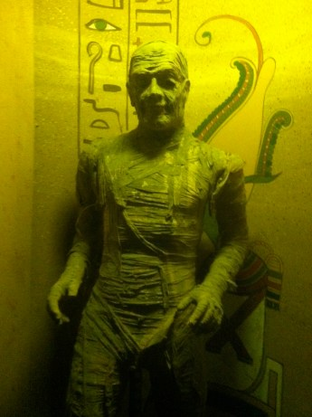 Mummy - can't remember which mummy movie...the original with Karloff?