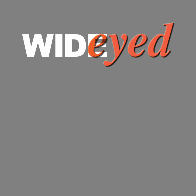 Wideyed logo responsive