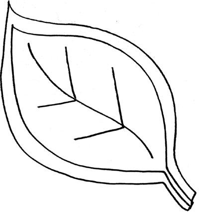 Printable Sunflower Leaves Masterlistforeignluxuryfree flower leaf