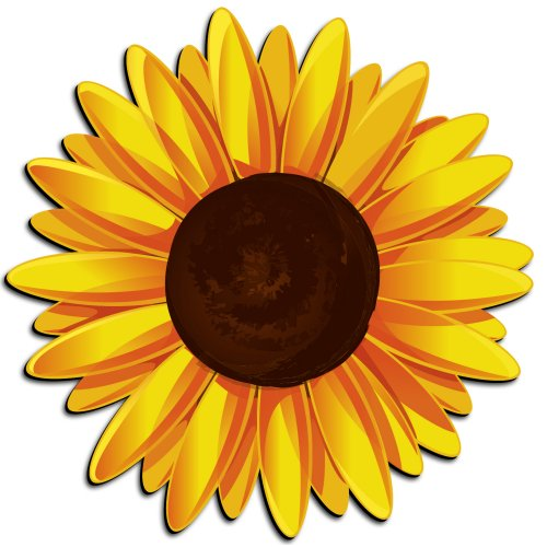 Sunflower Clip Art - 60 cliparts