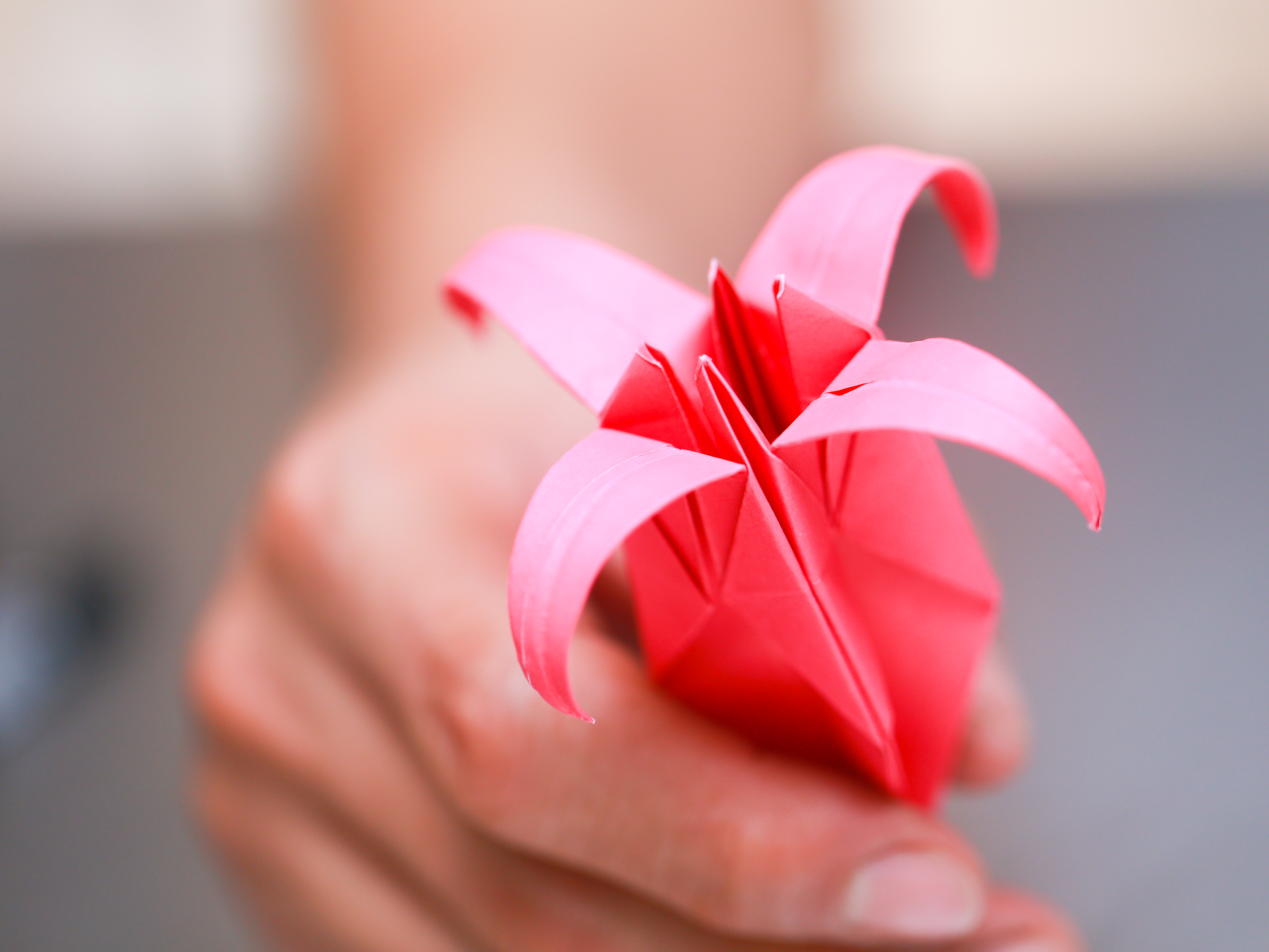 Origami Rose Falten How To Fold An Origami Lily With Pictures Wikihow