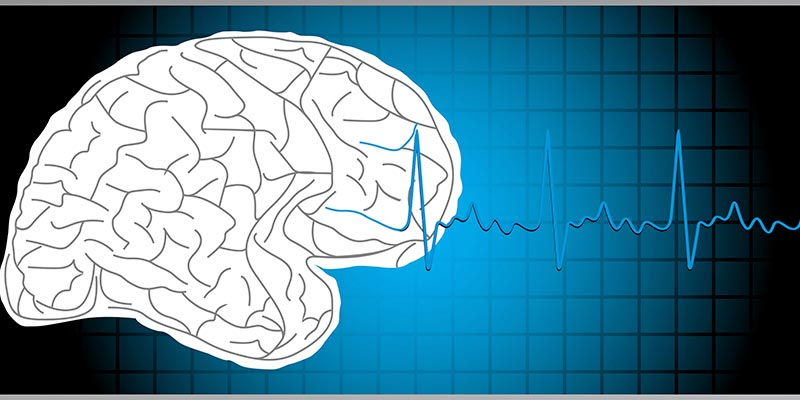 cerebro-wikolia