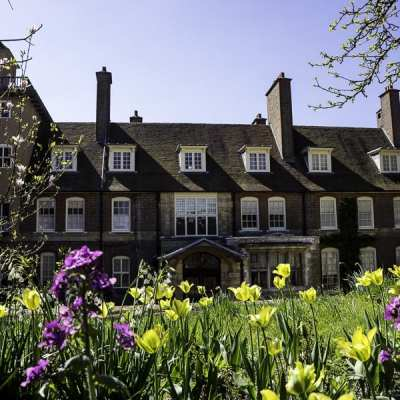 A riot of tulips at Standen House