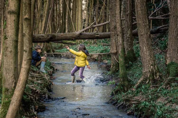 A stream adventure with kids