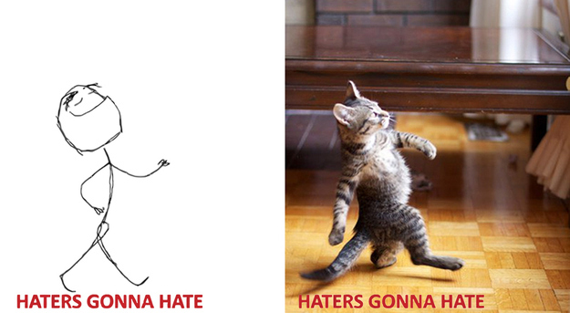 cats-reenacting-internet-memes-rage-faces-wildammo (12)