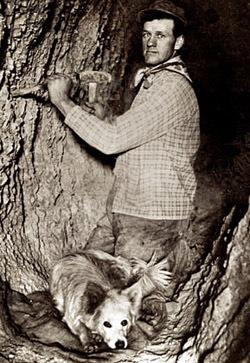 Photo courtesy of the Utah Historical Society