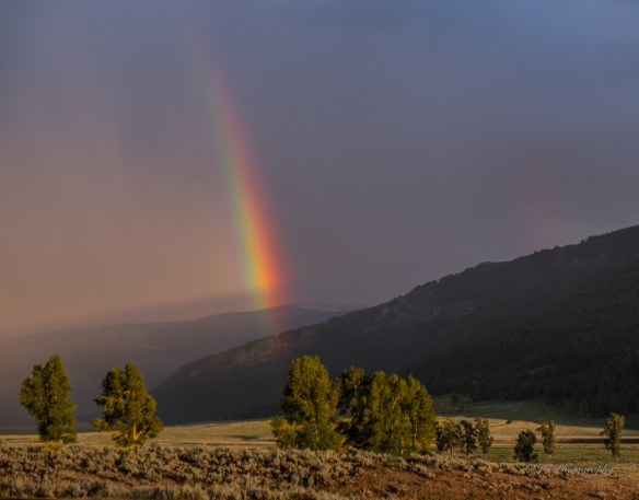 Rainbow at days end-0792