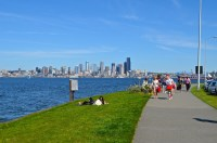 5 Items for Your Seattle Spring Bucket List   Her Campus