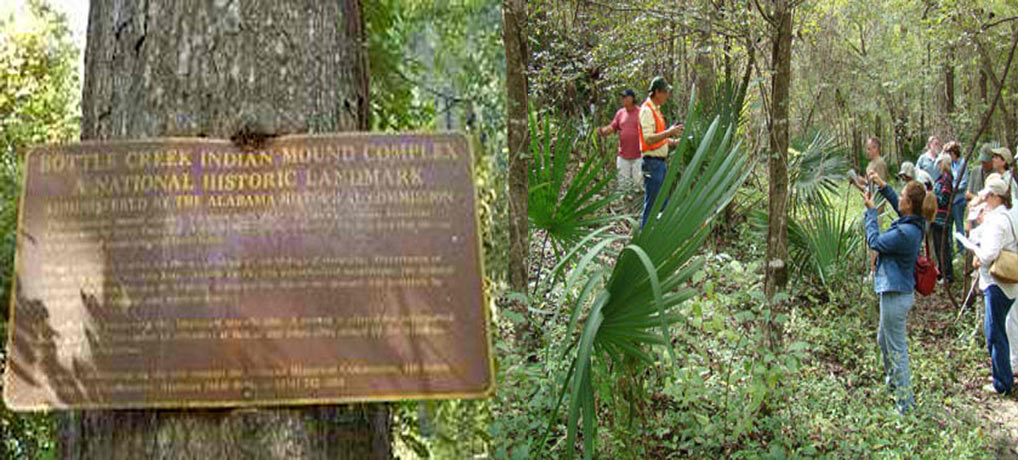 Bottle Creek Indian Mound Interpretive Kayak Tour