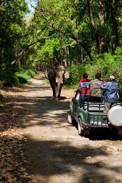 Jeep Safari at Corbett Tiger Reserve