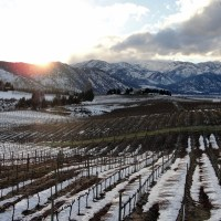 Lake Chelan Wine Tasting with Toddler in Tow