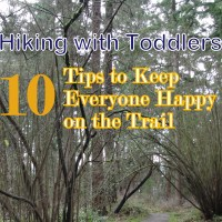Hiking with Toddlers: 10 Tips to Keep Everyone Happy on the Trail