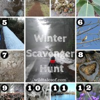 Winter Scavenger Hunt (with Printable) for Kids