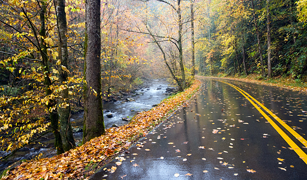 Fall In Love Again Wallpapers Echoes Of Autumn William Britten Photography