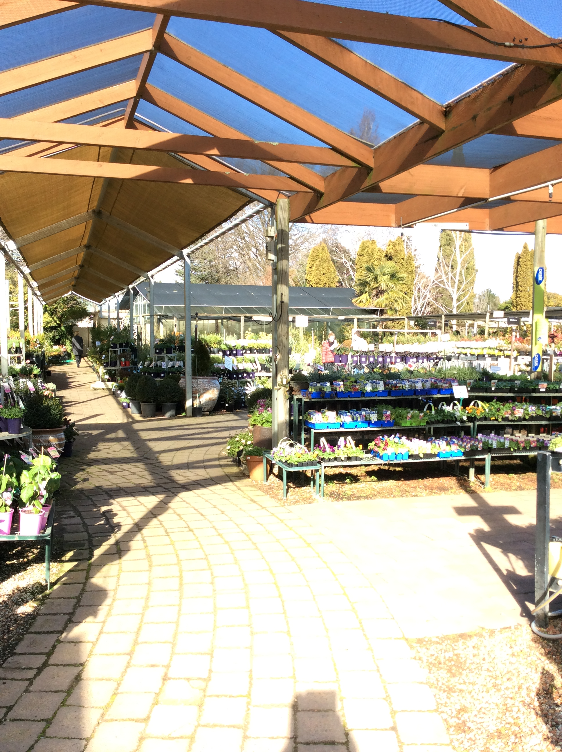 Canberra Today About Us Willow Park Nursery