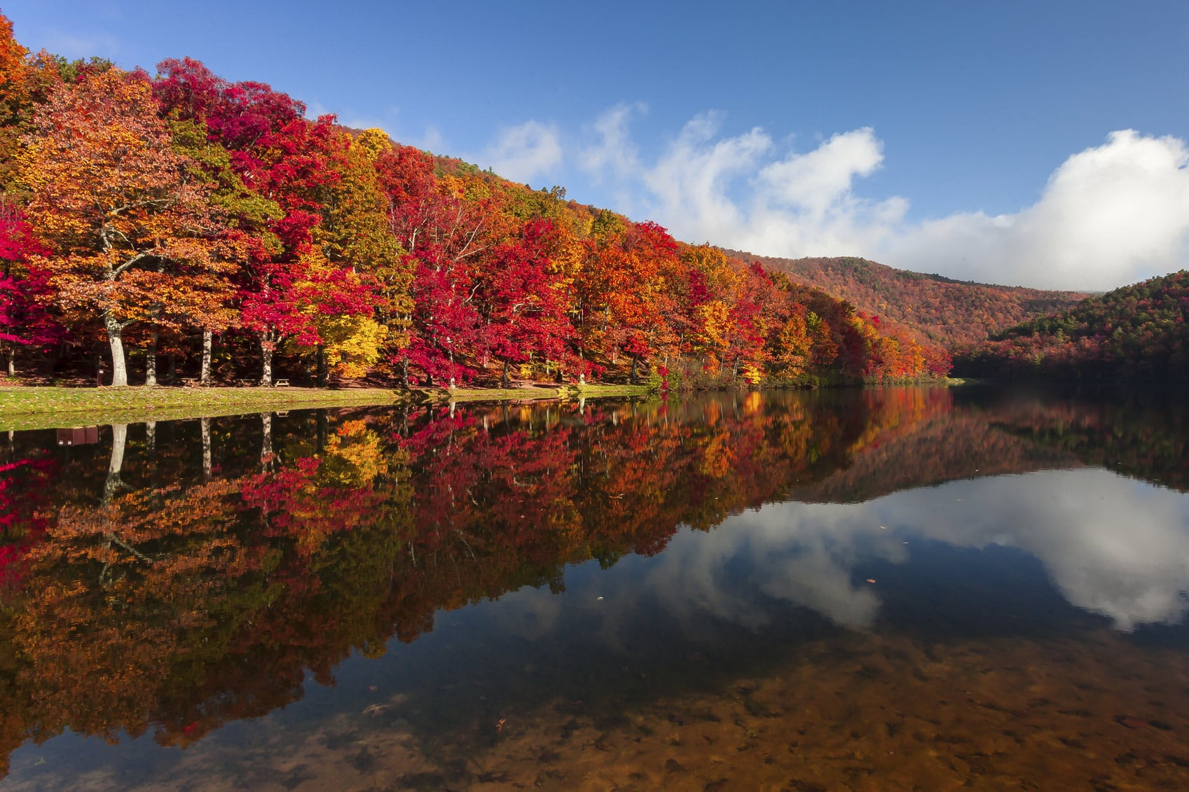 New Hampshire Fall Foliage Wallpaper A Guide To Pennsylvania S Fall Foliage Willow Tree And