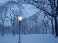 Winter Park Lamp Post Pictures to Pin on Pinterest