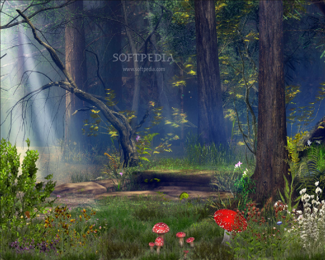 Earth 3d Live Wallpaper Windows 7 Download Enchanted Forest 3d Screen Saver 5 07