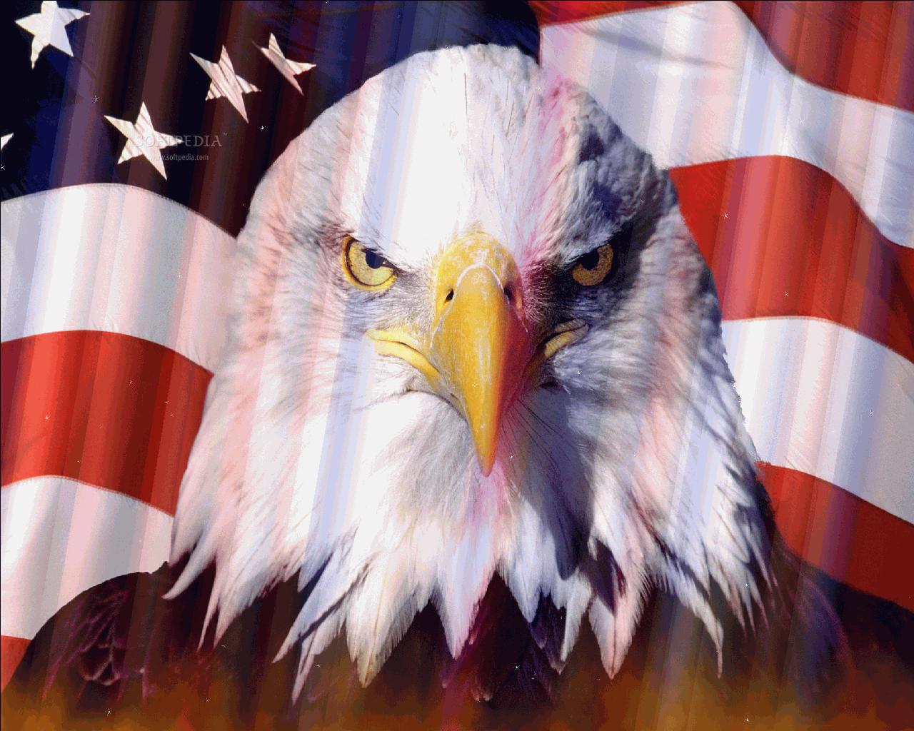 Matrix 3d Wallpaper Free Download Download American Flag Screensaver 1 0