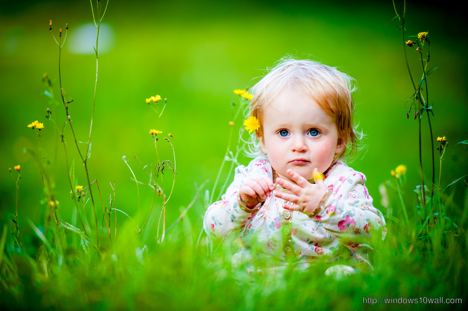 New Cute Baby Girl Wallpapers Baby Windows 10 Wallpapers