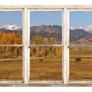 colorado horses window view