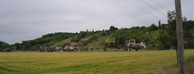 Kornfelder und Weinberge