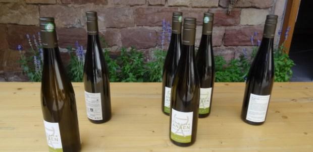 Daniel's wines.