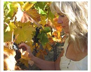 heidi-vineyard