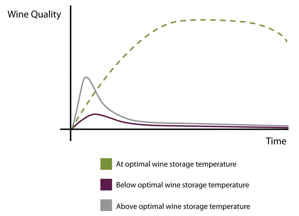 Wine Aging - How Wine Ages  Improves - Wine Guardian®