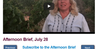 Afternoon Brief, July 28