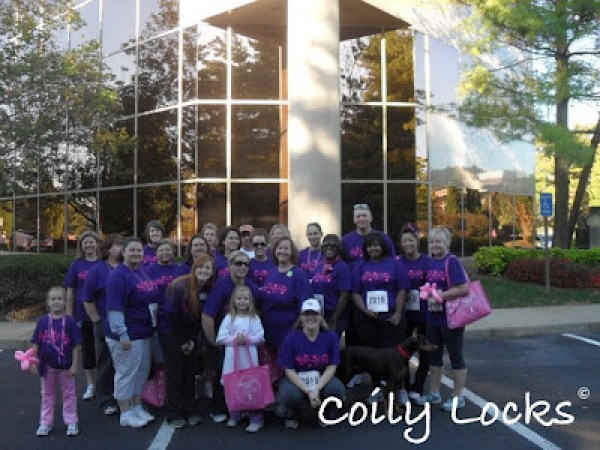 Bippity Boppity Boobs Breast Cancer walk 2012