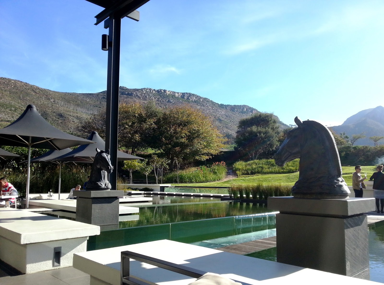 Farmhouse Contact Number Steenberg Wine Farm Constantia A Good Year