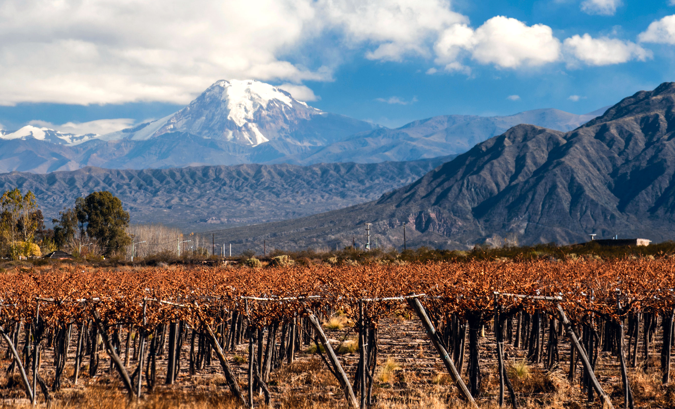 Wein Chardonnay Mount Aconcagua And Her Namesakes – Wine, Wit, And Wisdom