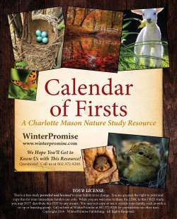 Calendar_of_Firsts_Cover