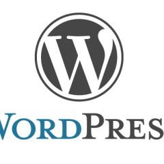 WordPress 101: get published
